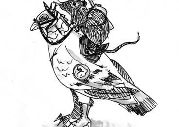 Battle pigeon and rat